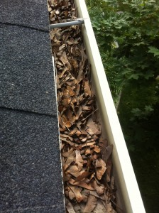 Gutter cleaning 1 before close